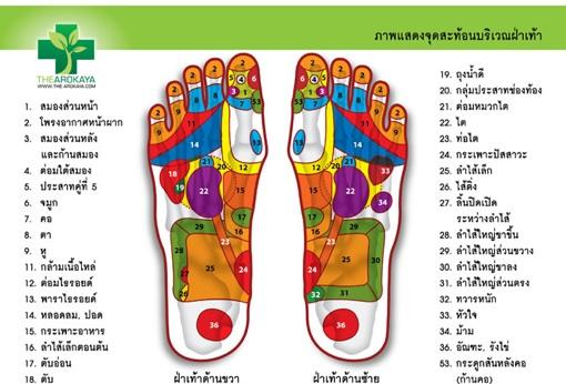 นวดเท้า,นวดกดจุดสะท้อนเท้า,reflexology